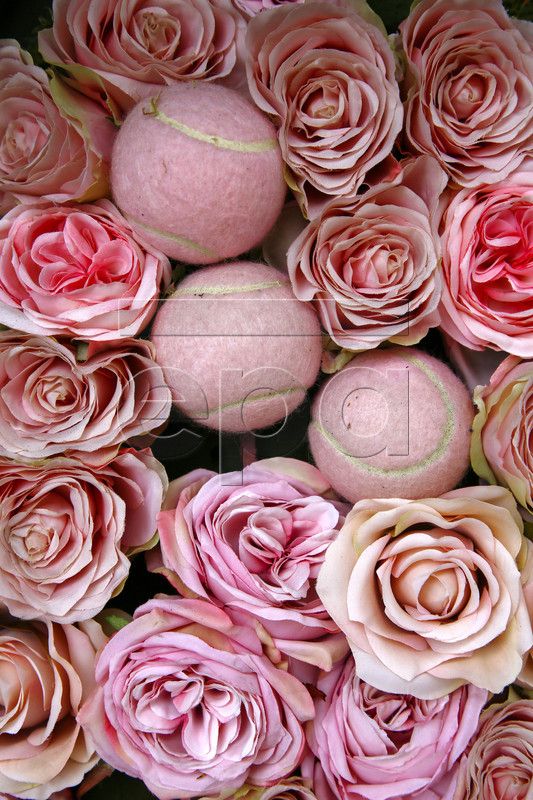 epa06078573 Pink roses and tennis balls are arranged at a tennis themed shop window in Wimbledon, London, Britain, 09 July 2017. London is currently hosting the 140th edition of the Wimbledon Championships, the world's oldest tennis tournament running from 03 to 16 July. EPA/NIC BOTHMA